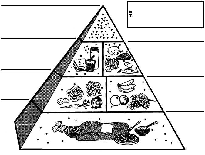 Free Coloring Pages Of Four Food Groups Food Pyramid Coloring Page