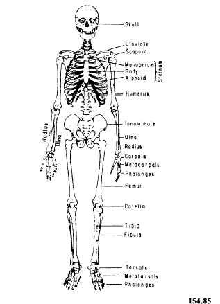 Bmw Body Parts Diagram